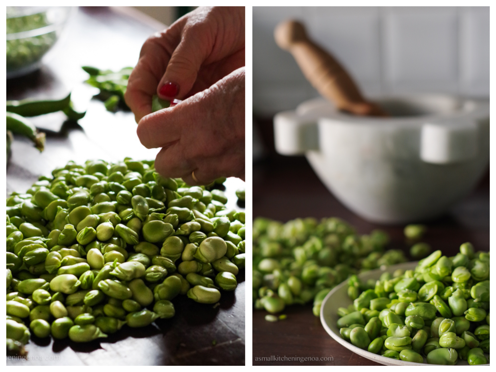 shelling fava beans fromt their pods for the fava beans pesto in the mortar