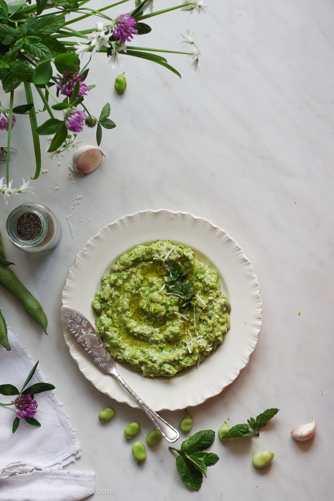 Fava beans pesto: a springy traditional recipe from the west Italian Riviera