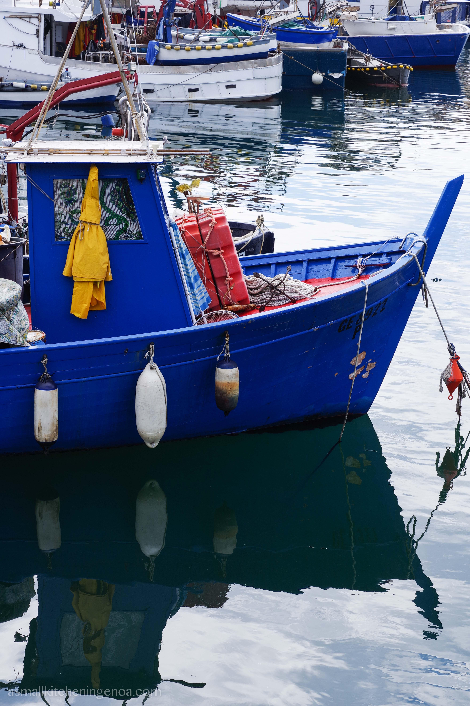 Genoa fish market