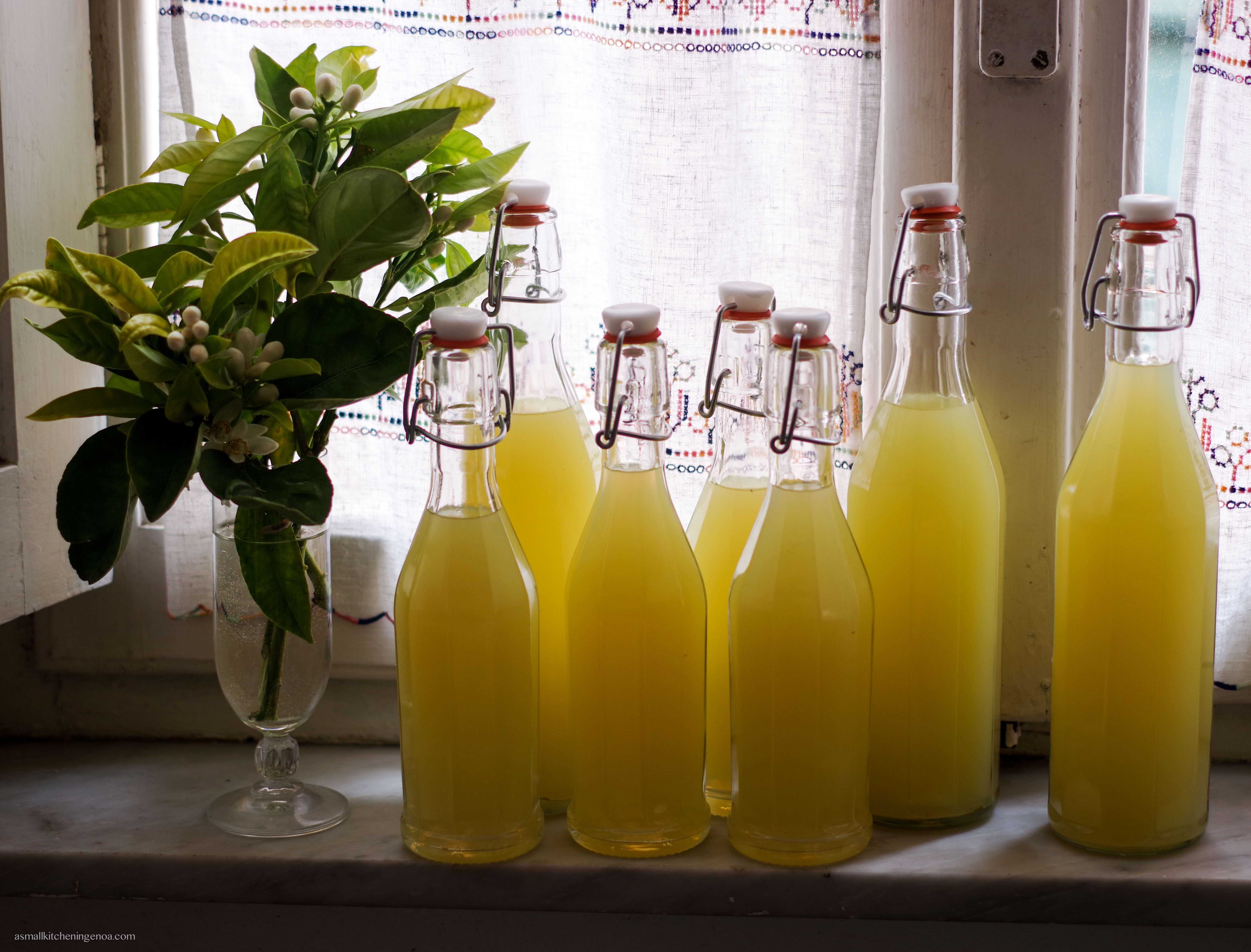 limoncello recipe: limoncello just bottled.