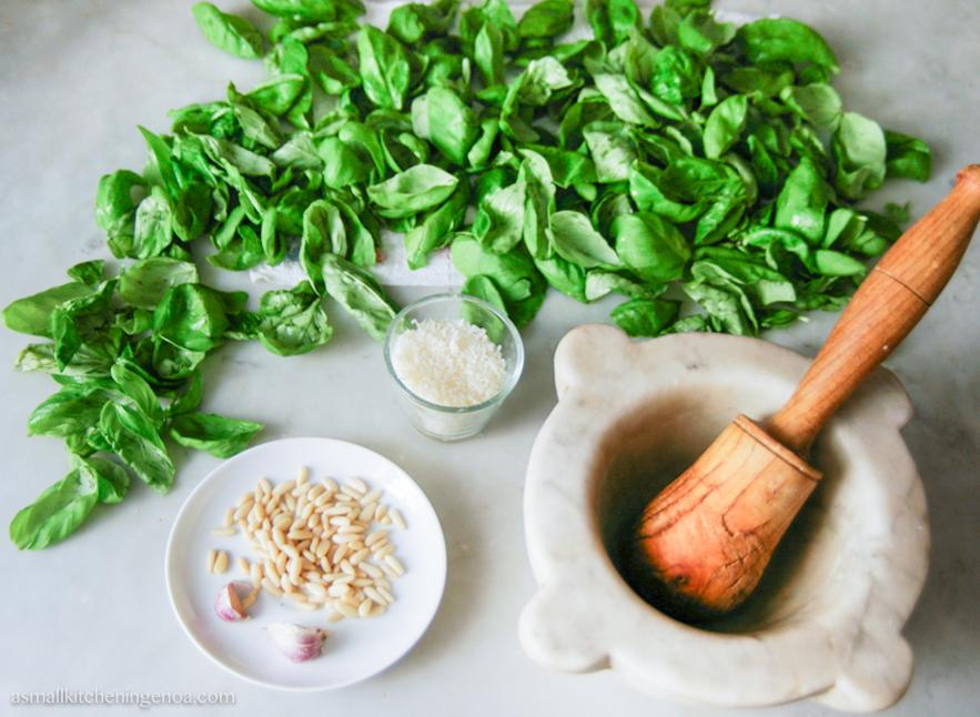 Genoese basil pesto sauce: the ingredients