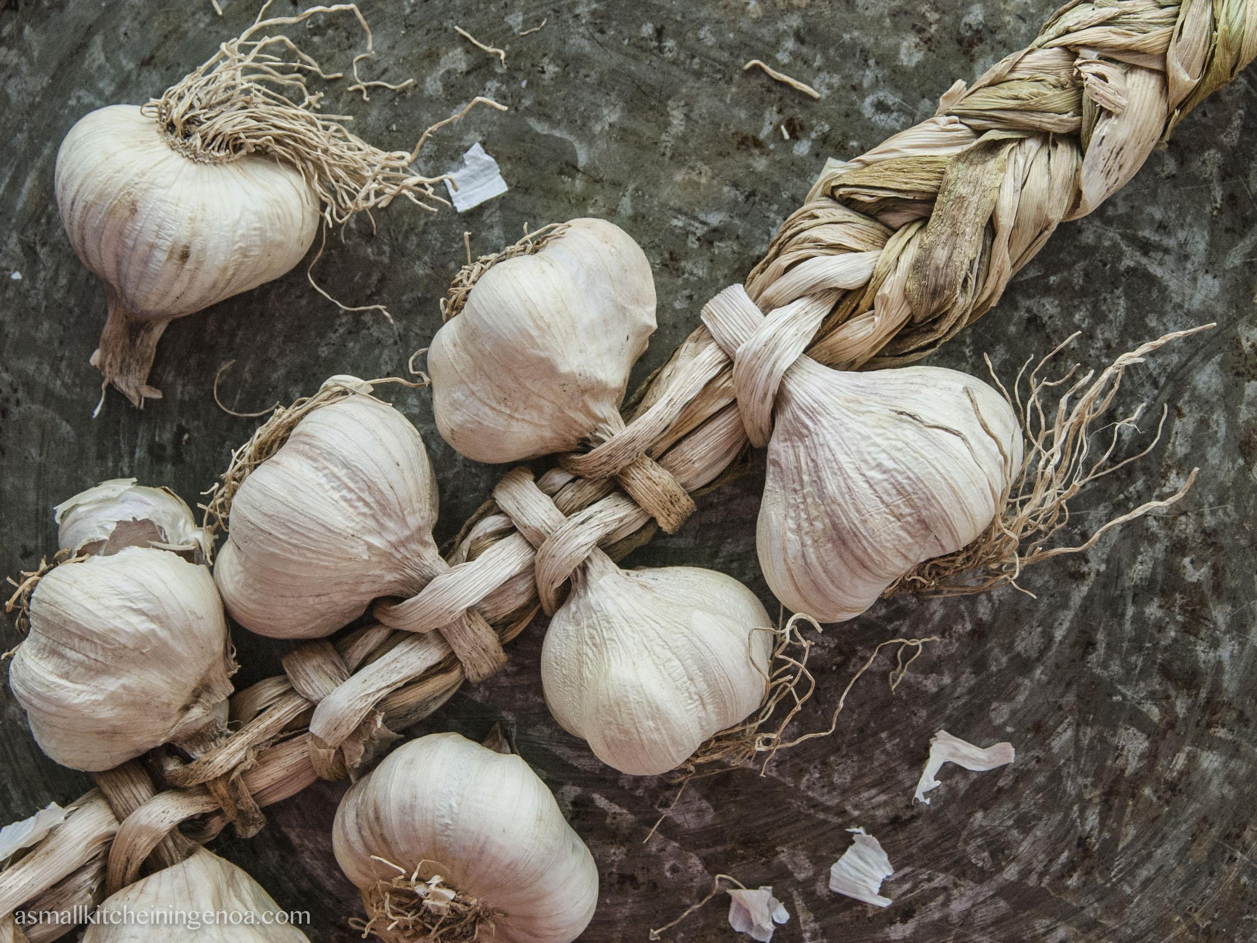 Pesto Sauce: aglio di vessalico is the best ingredient