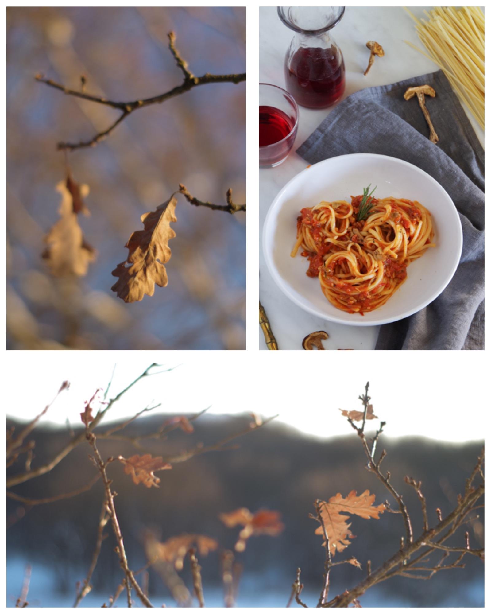 tagliatelle with Genoese mushroom sauce