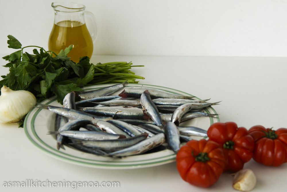 bagnun_ Ligurian anchovies soup _ingredients