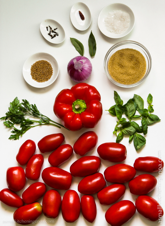 salsa rubra, an healthy ketchup Italian style