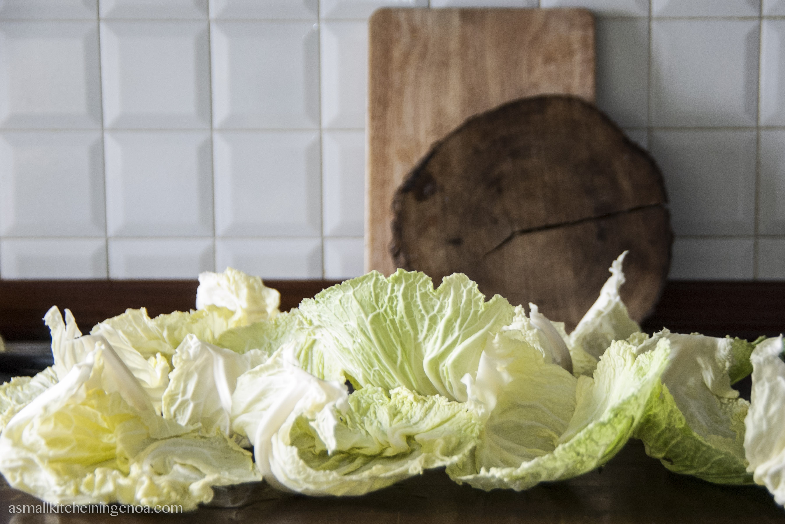 cabbage-leaves