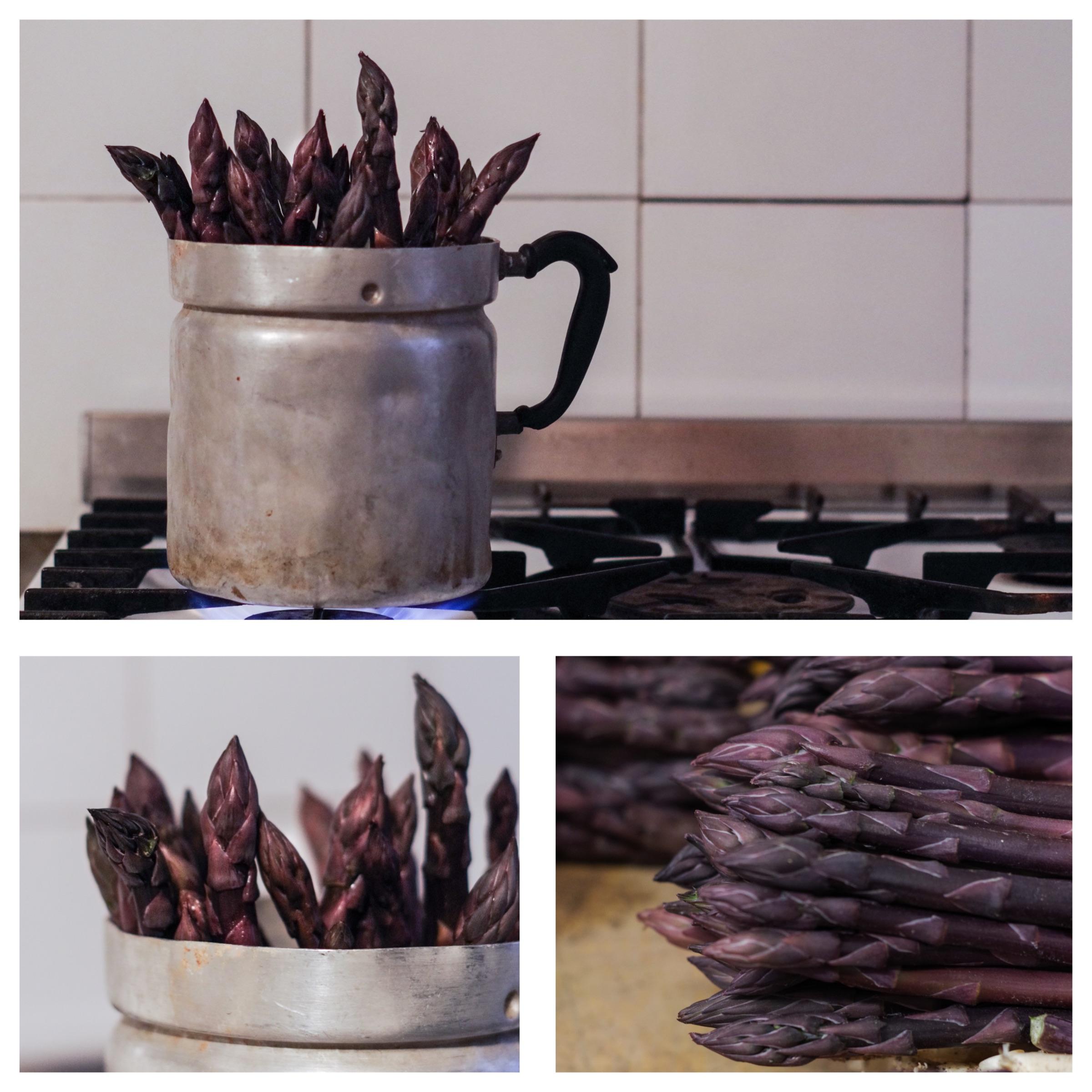 asparago violetto di Albenga: presidio slow food della Liguria