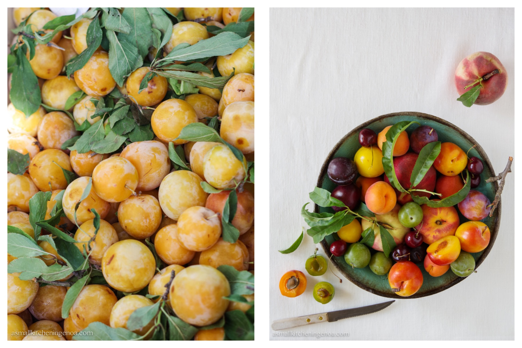 Giardiniera dolce: una torta di frutta estiva secondo la ricetta ligure