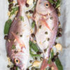 sea bream Liguria style