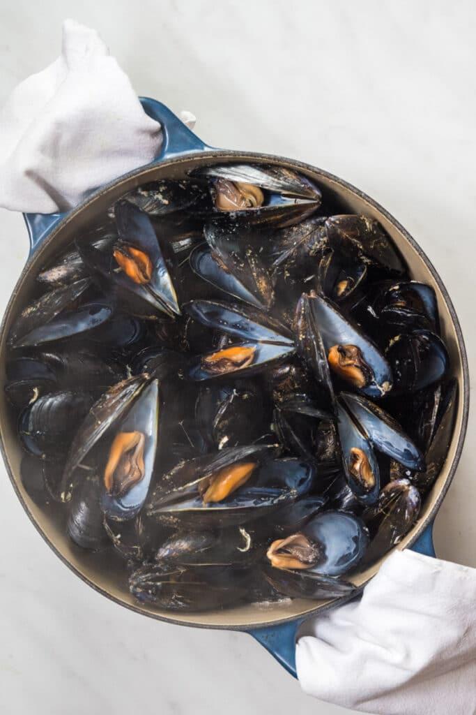 Italian Riviera mussel ragu